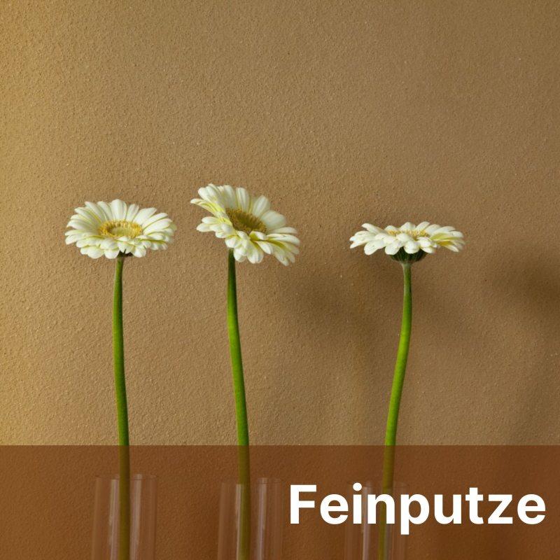 Feinputze